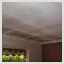 Ceiling Damage 13