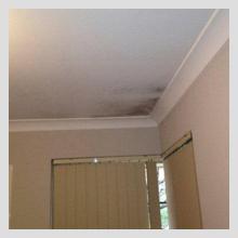 Ceiling Damage 16