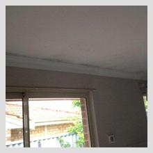 Ceiling Damage 18