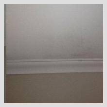 Ceiling Damage 20