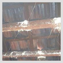 Ceiling Damage 28