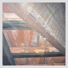 Ceiling Damage 39