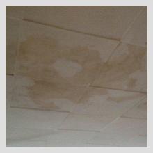 Ceiling Damage 44