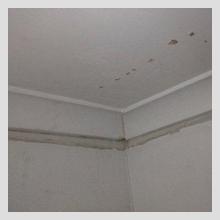 Ceiling Damage 3