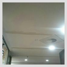 Ornate Ceiling repairs 27