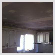 Ornate Ceiling repairs 37